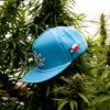 Texas Cannabis Supply Blue Hat